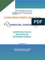 Bases_Concurso_-PNIPA_-2018-2019_SEREX