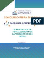 Bases_Concurso_PNIPA_-2018-2019_SFOCA