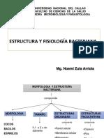 Estructura y Fisiologia Bacteriana