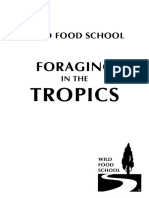 Foraging in the Tropics-wfsusa