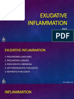 pathology_INFLAMATION_1.pptx