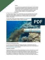 Contaminación Marina
