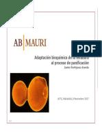 Levaduras-Adaptación-bioquímica-de-la-levadura-al-proceso-de-panificación-.-Javier-Rodríguez.-AB-MAURI.pdf