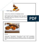 263595135-TANAMAN-OBAT-KELUARGA-pdf.pdf