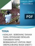 248032104-tanaman-obat-keluarga-toga.pptx