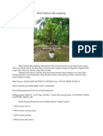 PRODUKTIF..!Hp/Wa 0813-2711-9234, Jual Bibit Durian Musang King, Bibit Durian Musang King Di Bogor,
