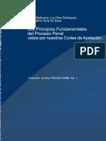 Principios Fundamentales del Proceso Penal