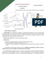 Nutritie si dietetica, Macronutrienti, Lipidele.doc