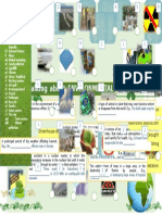 64882_environment_and_problems__vocabulary (1).doc