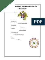 HEMATOMETRIA.docx