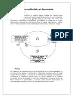 Efectos ambientales de las canteras.doc