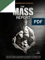 251662958 the Deisel Strength Mass Report