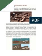 Qué Es Un Paleontólogo y Qué Es Un Fósil