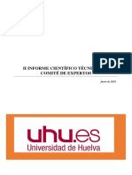 II Informe Expertos DIG