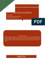 Sistema Taungya Presentacion