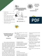 227806764-Leaflet-Pijat-Oksitosin.pdf