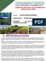 312329774 Demanda de Agua de Riego en El Peru