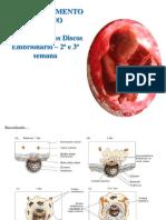 2 Discos embriónarios.pdf