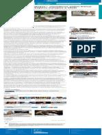 _El Ocaso de Las Abejas__ Científicos Piden Frenar Importación de Abejorro Europeo a Chile