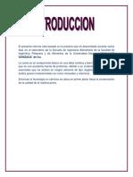salchicha.docx