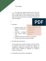 BULBOS ALIMENTICIOS - ZANAHORIA.docx