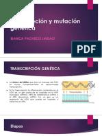Transcripción y Mutación Genética