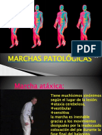 Marchas patologicas