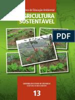 13-agricultura-sustentavel1