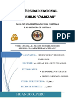 Informe_cachigaga.docx