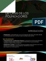 La crisis de los polinizadores.pptx