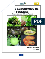 Manejo Agronómico de Frutales.pdf