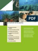 Nuticion, Relacion y Reproduccion en Plantas.pdf