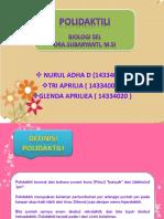 BIOLOGI SEL POLIDAKTILI.pptx