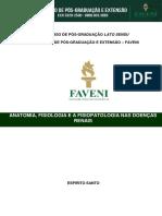 Anatomia Fisiologia e a Fisiopatologia Nas Doenças Renais