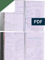 Day 2 Field Notes Taken by Svanborg Jonsdottir + Initial Analysis