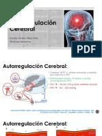Autorregulación Cerebral -  Resumen de articulo Hipercarbia