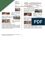 F. INFORMATIVA Los desastres naturales en el Perú - 5° GRADO