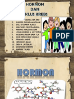 Baru Hormon & Siklus Krebs[1] Klmpk 4