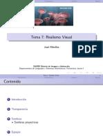Tema 07 Realismo Visual
