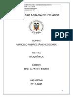 BIOQUÍMICA 1er PARCIAL - MARCELO SÁNCHEZ.docx