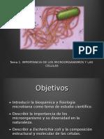 IMPORTANCIA DE MICROORGANISMOS.ppt