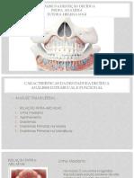 Análise da Dentição