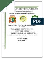 TRABAJO DE INVESTIGACION MEJORADO.docx
