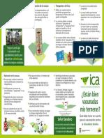 folleto-vacunacion-BR.pdf