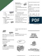 DIS-PLAN leaflet.doc
