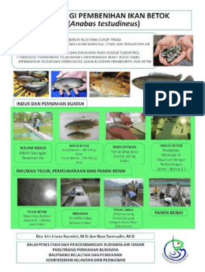 Contoh Promosi Pamflet Dan Poster