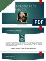 BASES BIOLÓGICAS DE LA CONDUCTA.pptx