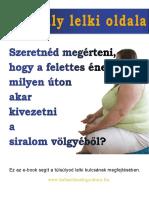 A_tulsuly_lelki_oldala1.pdf
