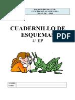 CN4 esquemas.pdf