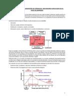 Farmacocinética y farmacodinamia